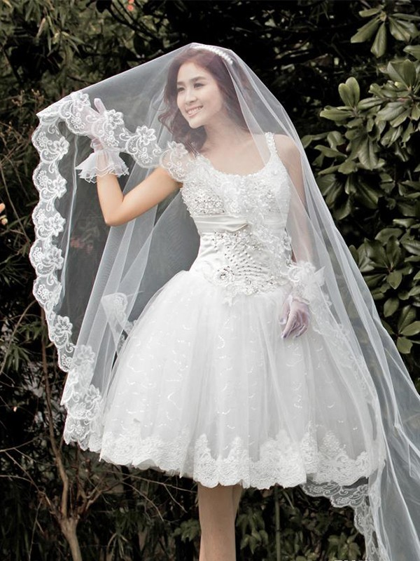 Gorgeous Tulle With Lace Wedding Veils